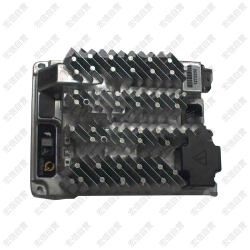 Delta-Q 吉尼24VDC充电器 (原装件)