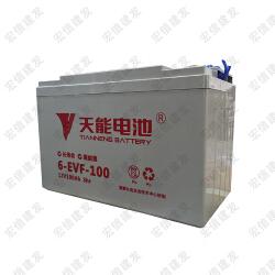 天能 免维护动力电瓶(替代T-1275)